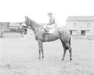 Whistlers Daughter with J Sime (433-01)